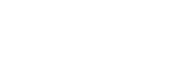 ACE SHOVEL